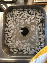 saunas ice baths and post concussion syndrome my post if you don t have access to a sauna dont worry you can get similar results from a hot shower and an ice bath for me i would put my head and or