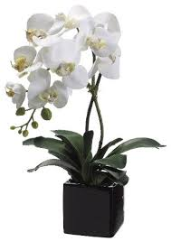 orchid plants for sale 20 white artificial phalaenopsis orchid plant in pot sale