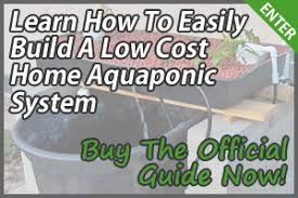 Plant Lights How To Choose by How To Choose The Right Grow Lights For Your Aquaponics System