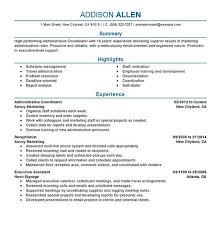 example great resume lukex co