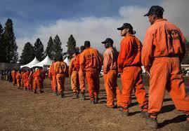 Wildfire Yosemite 2013 by Firefighting Felons Hundreds Of Inmates Battling The Yosemite