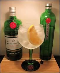 tom collins bottle evans gin and tonic summer fruit cup
