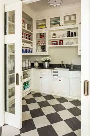 Kitchen Pantry Idea Decorations Cool Glass Laminated Kitchen Pantry Decor With Small