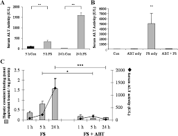 the metabolism and toxicity of furosemide in the wistar rat and cd