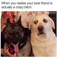 Best Friends Memes - best friend memes to keep your friendship strong