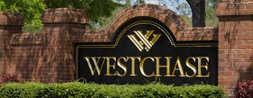 westchase homes for sale homes for sale in westchase fl