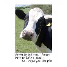 cow greeting cards best animated birthday cards products on wanelo