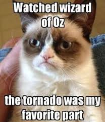 Wizard Memes - wizard of oz tornado memes funny pictures pinterest memes