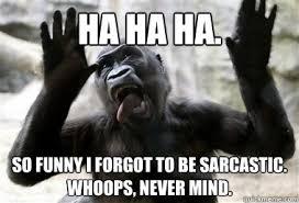 Sarcastic Funny Memes - ha ha ha so funny i forgot to be sarcastic whoops never mind