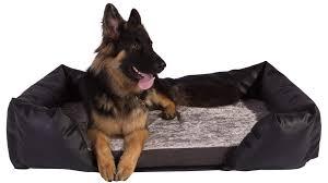 Comfortable Dog Pet Beds Accessories Silentnight