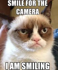 Angry Meme Cat - funny cute angry cat memes collection for friends family