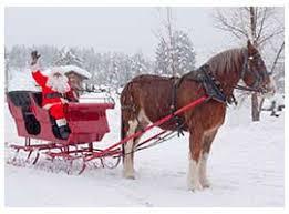durango colorado winter sleigh rides sleigh tours rapp