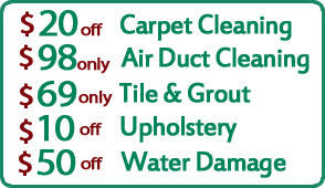 Carpet Cleaning Pearland Tx Professional Steam Cleaners