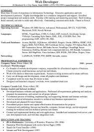 Sample Resume Website by Net Developer Resume U2013 Resume Examples