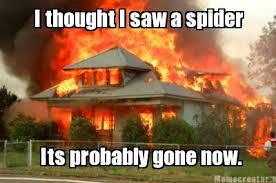I Saw A Spider Meme - animal jam wiki chat logs 15 march 2014 animal jam wiki fandom