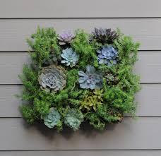 livingroom wall mounted flower pots wall herb garden living wall
