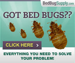 Kill Bed Bugs How To Get Rid Of Bed Bugs Bed Bug Faqs
