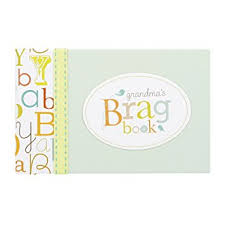 brag book photo album c r gibson s brag book 10 sheets 20 pages