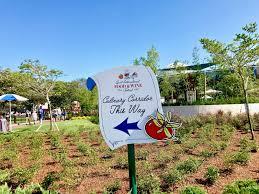 mouseplanet walt disney world resort update for september 5 11