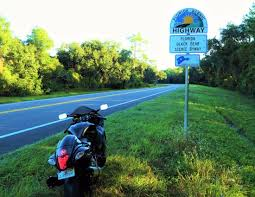 scenic byway florida black bear scenic byway picture of ocala national forest