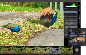 luminar review a serious challenger to the reigning pro apps for