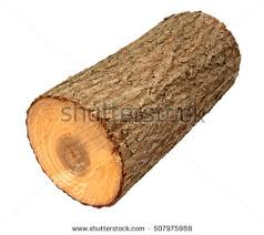 wood log stock images royalty free images vectors