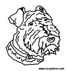 dog color pages printable dogs coloring pages irish setter