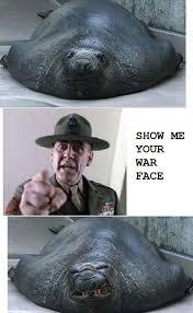 War Face Meme - show me your war face meme by cyberguy159 memedroid