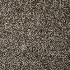 Home Decorators Carpet Trafficmaster Field Day Rollins Twist 18 In X 18 In Carpet Tile