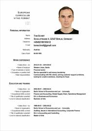 Example Of Resume Personal Information by Top 10 Hacks To Find A Job In Germany Cv Cover Letter Interview