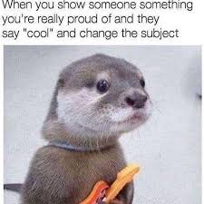 Pay Attention To Me Meme - you otter pay attention to me more the annoying orange