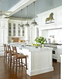 Traditional White Kitchens - white kitchen with blue gray ceiling traditional kitchen other