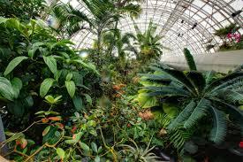 Oklahoma City Botanical Garden Bridge Myriad Botanical Gardens Myriad Botanical Gardens