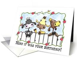 cow greeting cards happy birthday three cows mooing card 52506
