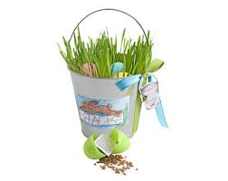 easter pail easter pails etsy