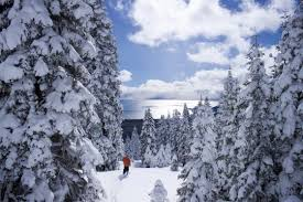 50 things to do in lake tahoe in winter 7x7 bay area
