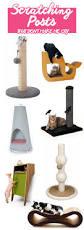 modern cat supplies that don u0027t make me cry u2022 choosing figs
