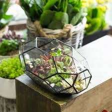 online get cheap large terrarium aliexpress com alibaba group