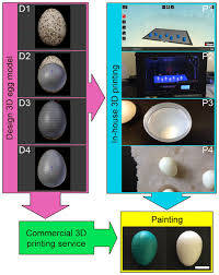 using 3d printed eggs to examine the egg rejection behaviour of