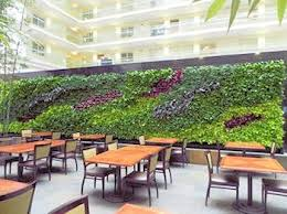 58 best living green walls images on pinterest landscaping