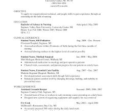 ex of nurse resume skills summary list outstanding nursing objectives resume skills summary nurse new