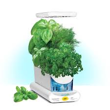 shop aerogarden sprout led hydroponic system 10 in maximum plant