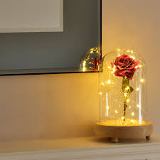 beauty u0026 the beast inspired enchanted rose in glass dome bell jar