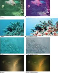 underwater image enhancement using particle swarm optimization
