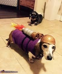 Weiner Dog Halloween Costumes 39 Halloween Costumes Images Animals Animal