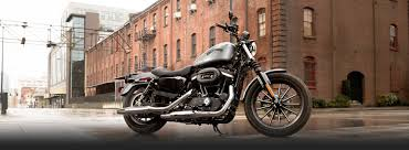 2015 sportster iron 883 bobber motorcycle harley davidson usa