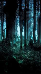 spooky woods iphone 5 wallpaper 640x1136