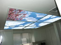 Sky Ceiling Light Skypanels Turn Your Ceiling Light Panels Into An Image Of The Sky
