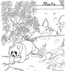 zoo panda free printable animal s160c coloring pages printable