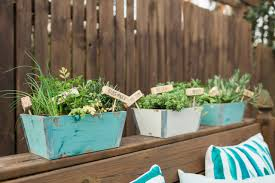 do it yourself window mounted hanging herb garden hgtv
